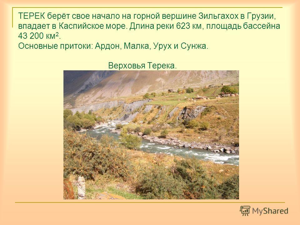 ТЕРЕК берёт свое начало на горной вершине Зильгахох в Грузии, впадает в Каспийское море. Длина реки 623 км, площадь бассейна 43 200 км 2. Основные притоки: Ардон, Малка, Урух и Сунжа. Верховья Терека.