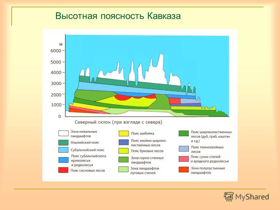 Высотная поясность Кавказа