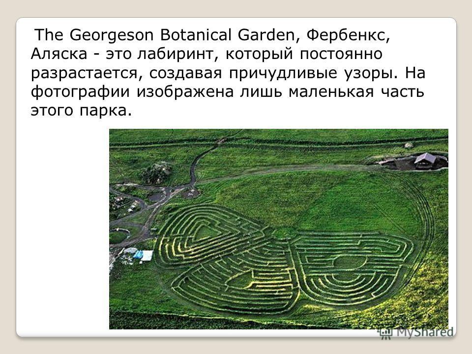 The Georgeson Botanical Garden, Фербенкс, Аляска - это лабиринт, который постоянно разрастается, создавая причудливые узоры. На фотографии изображена лишь маленькая часть этого парка.