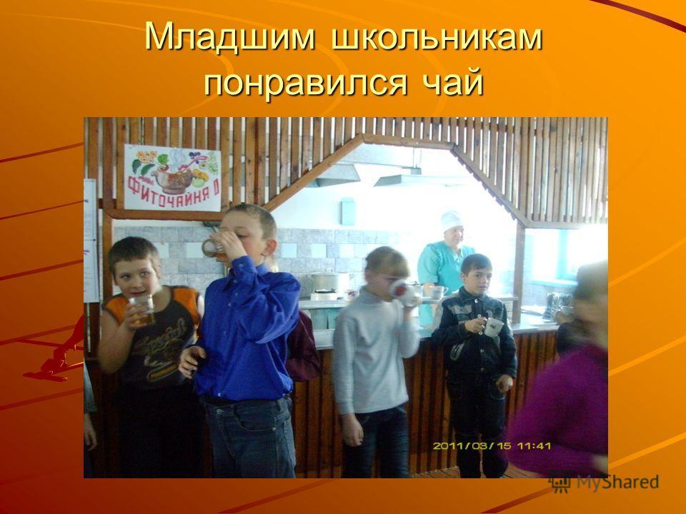 Младшим школьникам понравился чай