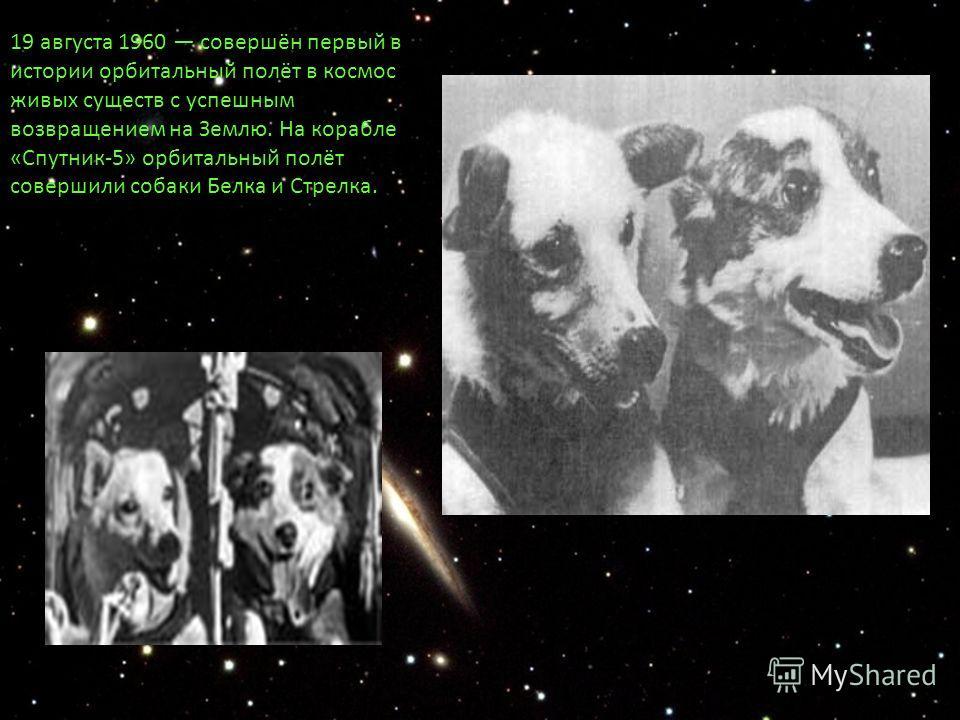 19 августа 1960 совершён первый в истории орбитальный полёт в космос живых существ с успешным возвращением на Землю. На корабле «Спутник-5» орбитальный полёт совершили собаки Белка и Стрелка. (СССР).