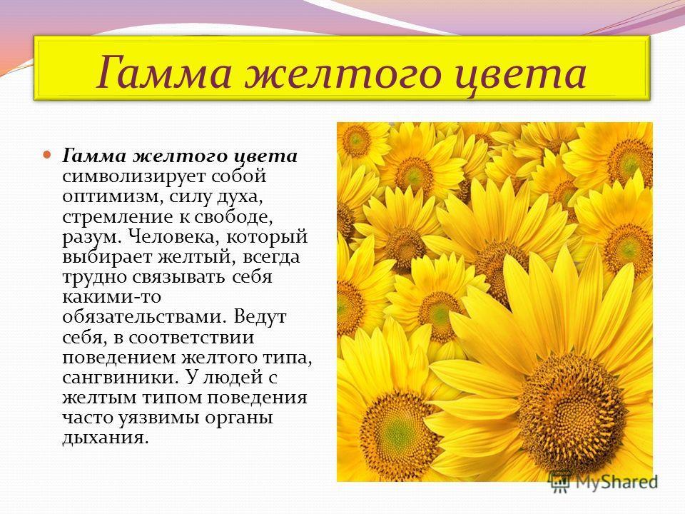 Гамма желтого цвета Гамма желтого цвета символизирует собой оптимизм, силу духа, стремление к свободе, разум. Человека, который выбирает желтый, всегда трудно связывать себя какими-то обязательствами. Ведут себя, в соответствии поведением желтого тип