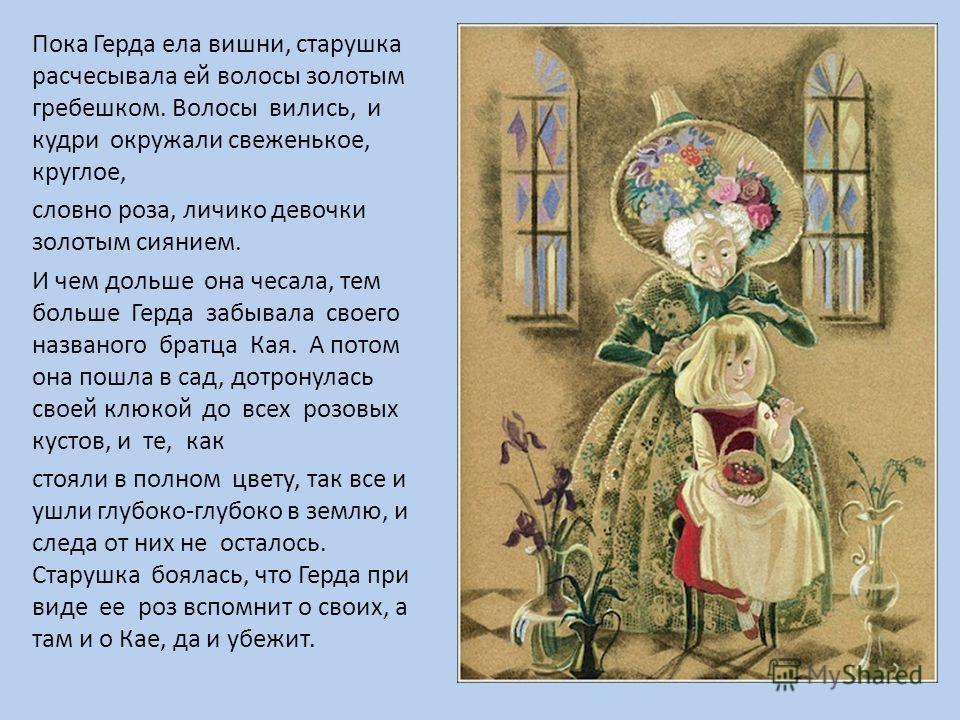 Пока Герда ела вишни, старушка расчесывала ей волосы золотым гребешком. Волосы вились, и кудри окружали свеженькое, круглое, словно роза, личико девочки золотым сиянием. И чем дольше она чесала, тем больше Герда забывала своего названого братца Кая.