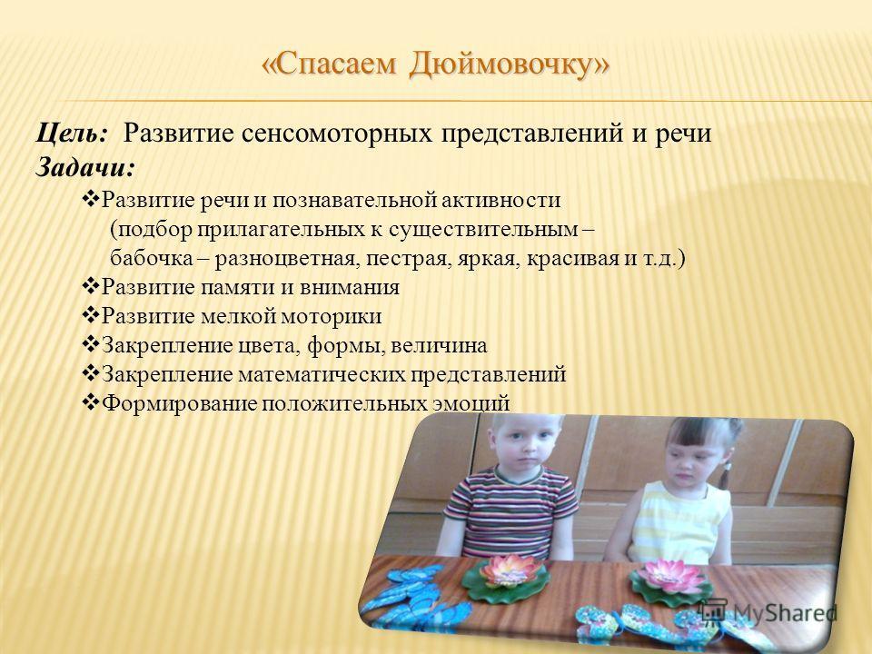 Цель: Развитие сенсомоторных представлений и речи Задачи: Развитие речи и познавательной активности (подбор прилагательных к существительным – бабочка – разноцветная, пестрая, яркая, красивая и т.д.) Развитие памяти и внимания Развитие мелкой моторик