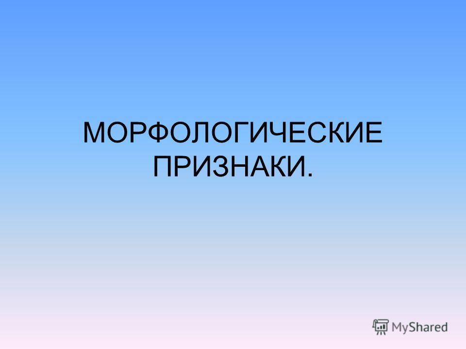 МОРФОЛОГИЧЕСКИЕ ПРИЗНАКИ.