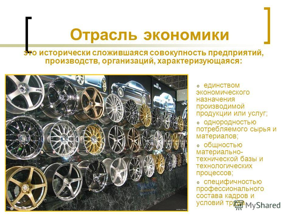 Отрасль экономики единством экономического назначения производимой продукции или услуг; однородностью потребляемого сырья и материалов; общностью материально- технической базы и технологических процессов; специфичностью профессионального состава кадр