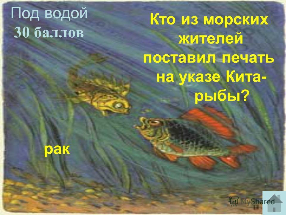 Под водой 30 баллов рак Кто из морских жителей поставил печать на указе Кита- рыбы?