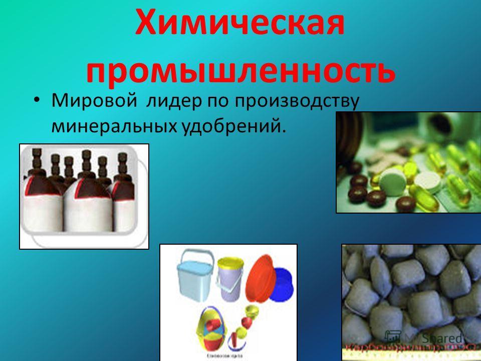 Химическая промышленность Мировой лидер по производству минеральных удобрений.