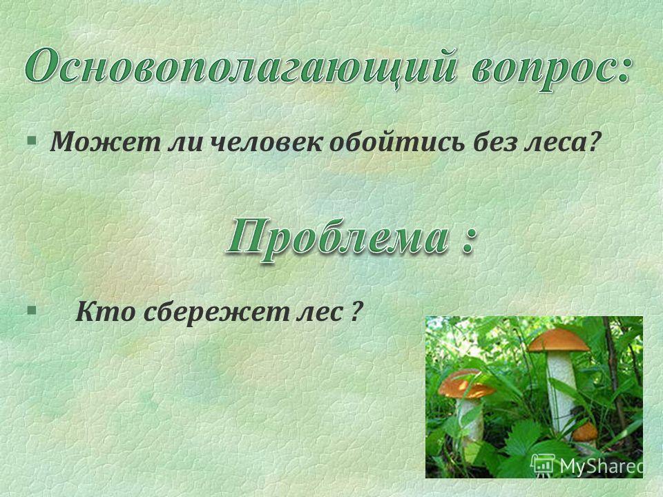 §Может ли человек обойтись без леса? § Кто сбережет лес ?
