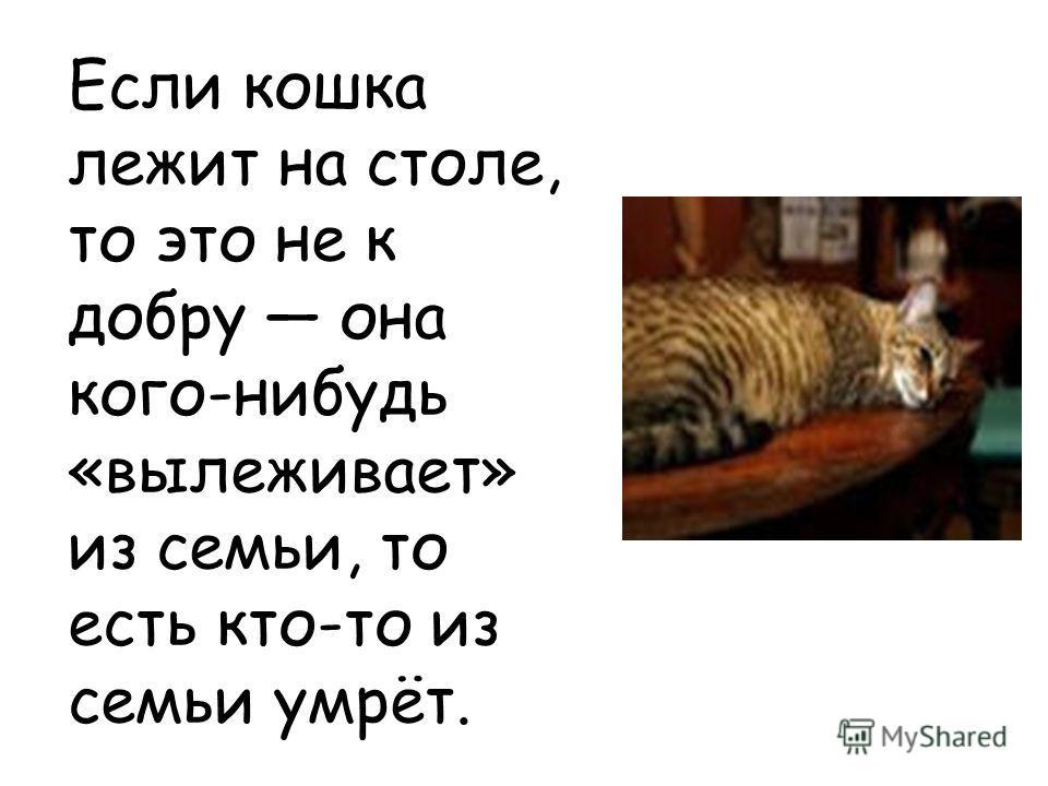 Если кошка лежит на столе, то это не к добру она кого-нибудь «вылеживает» из семьи, то есть кто-то из семьи умрёт.