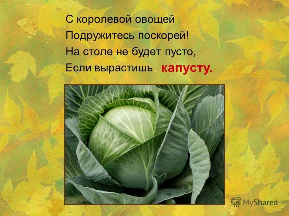 С королевой овощей Подружитесь поскорей! На столе не будет пусто, Если вырастишь капусту.