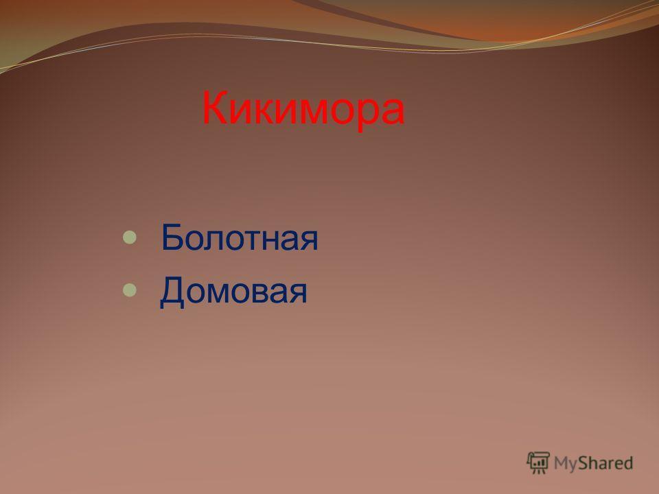 Кикимора Болотная Домовая