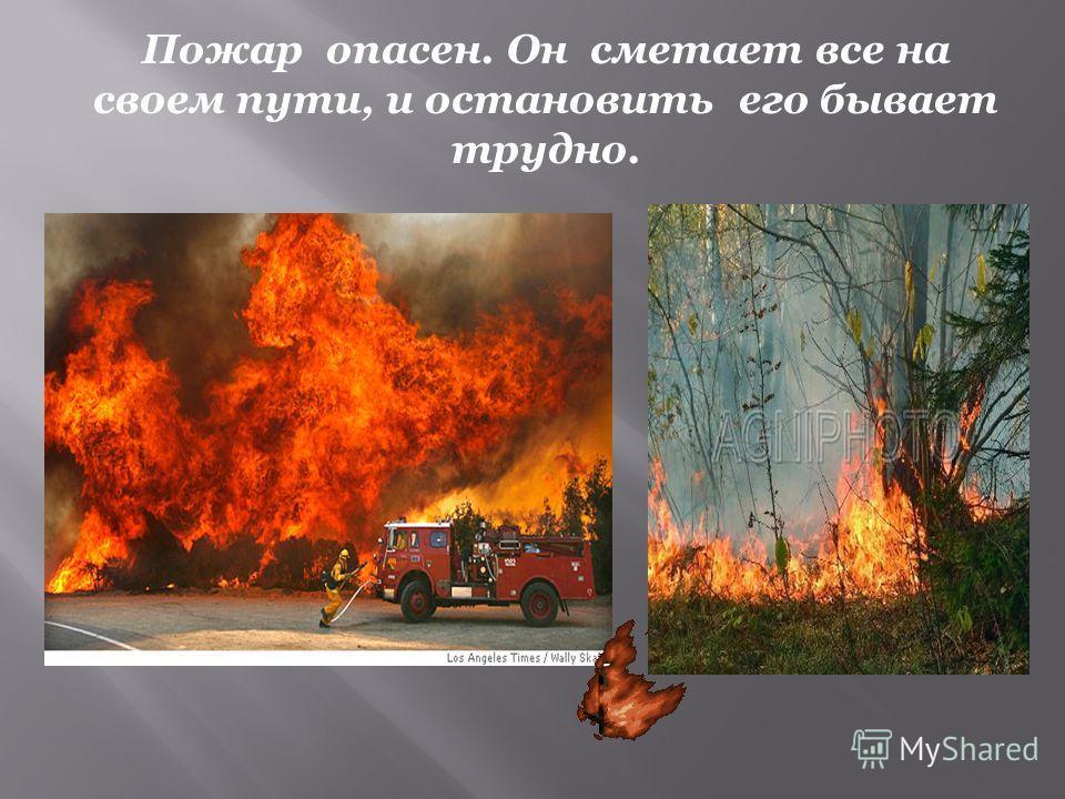 Пожар опасен. Он сметает все на своем пути, и остановить его бывает трудно.