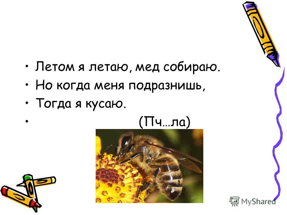 Летом я летаю, мед собираю. Но когда меня подразнишь, Тогда я кусаю. (Пч…ла)