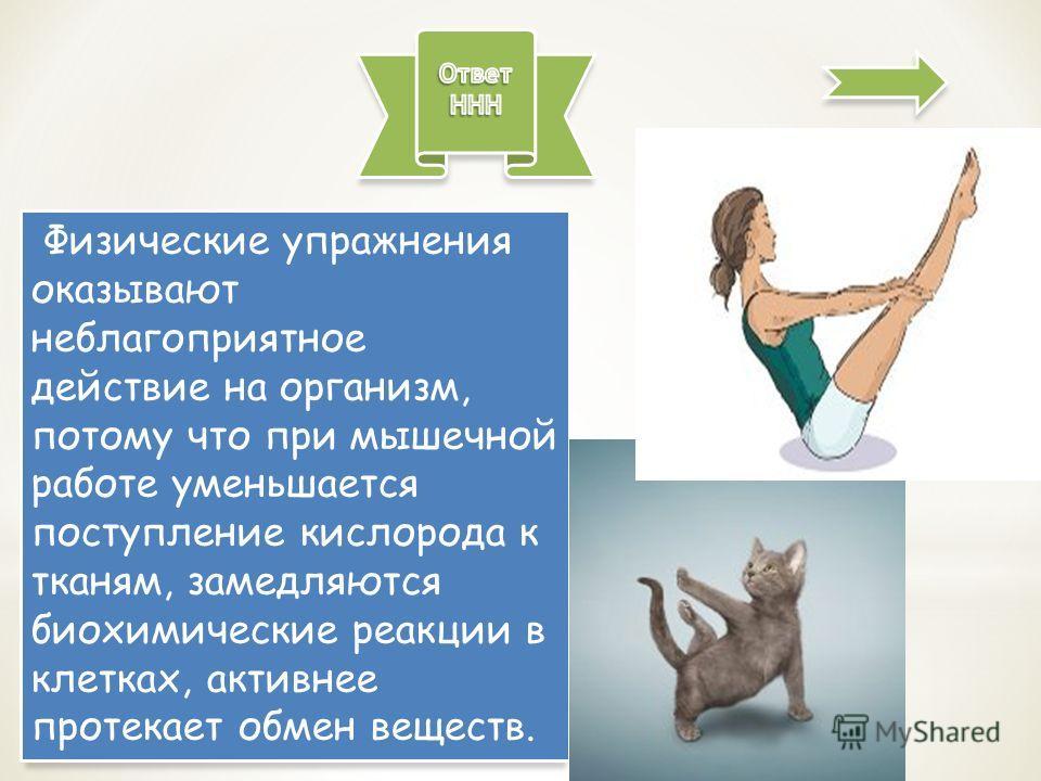 Физические упражнения оказывают неблагоприятное действие на организм, потому что при мышечной работе уменьшается поступление кислорода к тканям, замедляются биохимические реакции в клетках, активнее протекает обмен веществ.