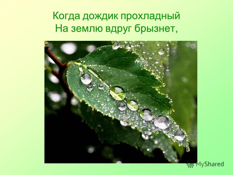 Когда дождик прохладный На землю вдруг брызнет,