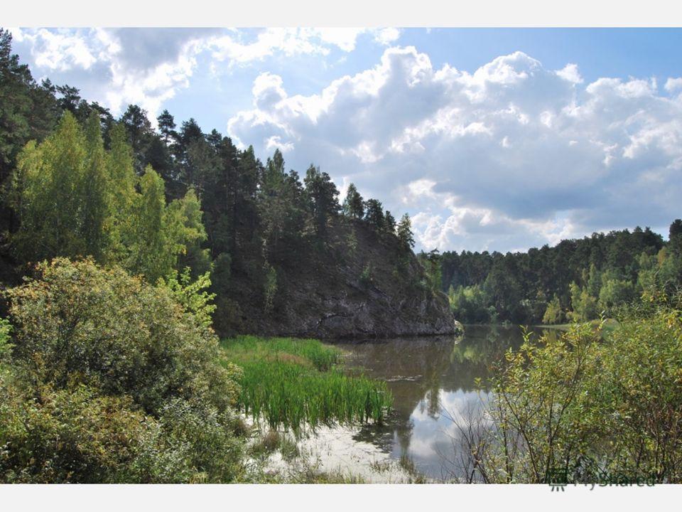 Природа Свердловской области