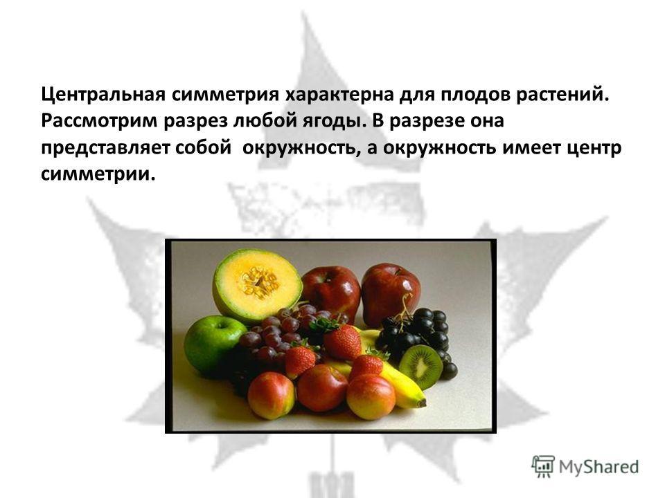Центральная симметрия характерна для плодов растений. Рассмотрим разрез любой ягоды. В разрезе она представляет собой окружность, а окружность имеет центр симметрии.