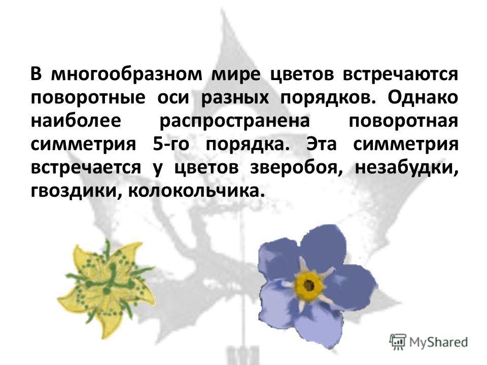 В многообразном мире цветов встречаются поворотные оси разных порядков. Однако наиболее распространена поворотная симметрия 5-го порядка. Эта симметрия встречается у цветов зверобоя, незабудки, гвоздики, колокольчика.
