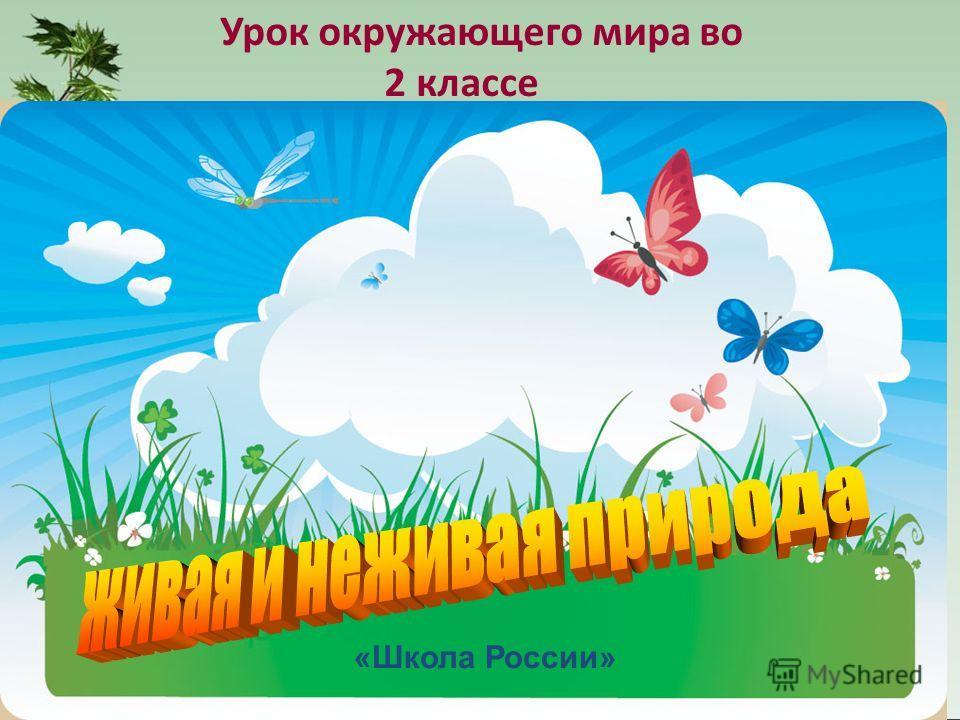 Урок окружающего мира во 2 классе «Школа России»