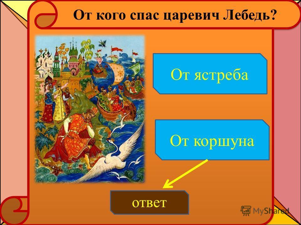От кого спас царевич Лебедь? ответ От ястреба От коршуна