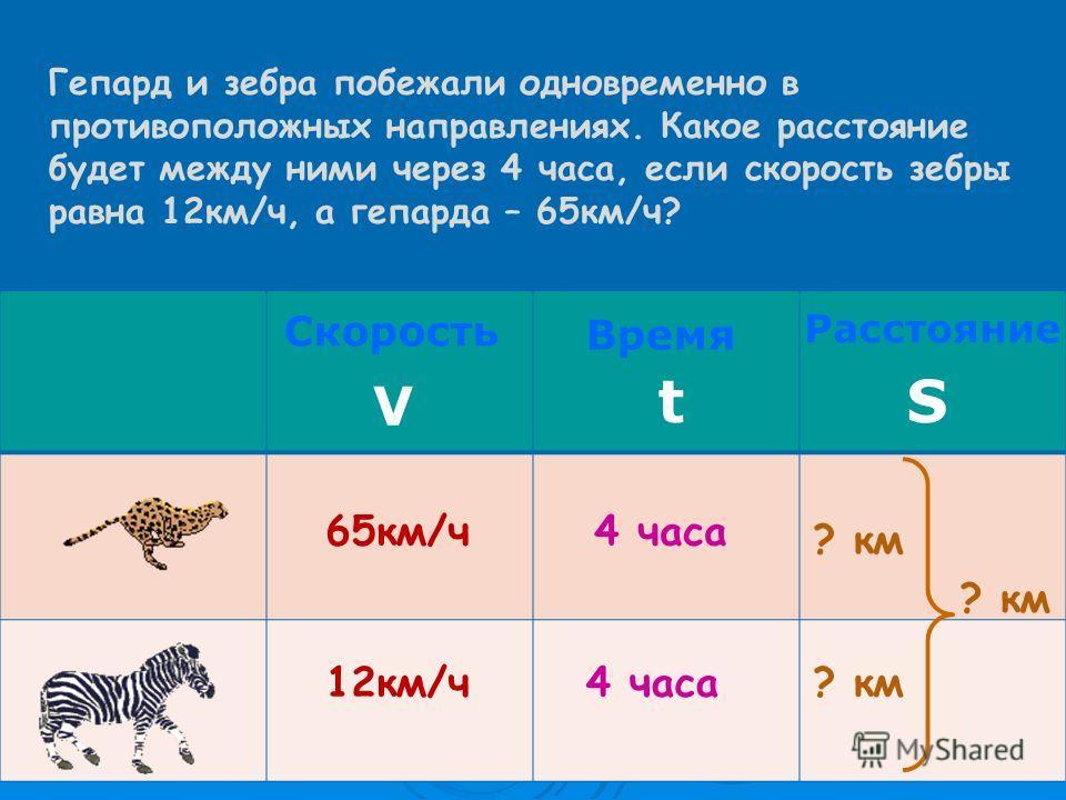 65км/ч 12км/ч Скорость V Время t Расстояние S 4 часа ? км Гепард и зебра побежали одновременно в противоположных направлениях. Какое расстояние будет между ними через 4 часа, если скорость зебры равна 12км/ч, а гепарда – 65км/ч?