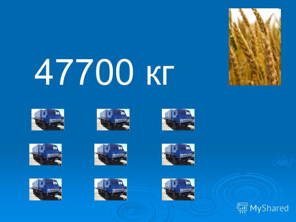 47700 кг