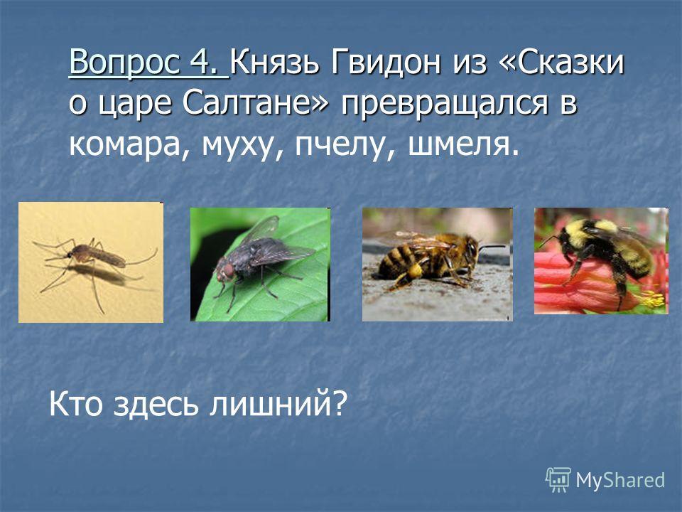 Вопрос 3. Перед вами реки ЕнисейБайкал Дон Волга Что здесь лишнее?