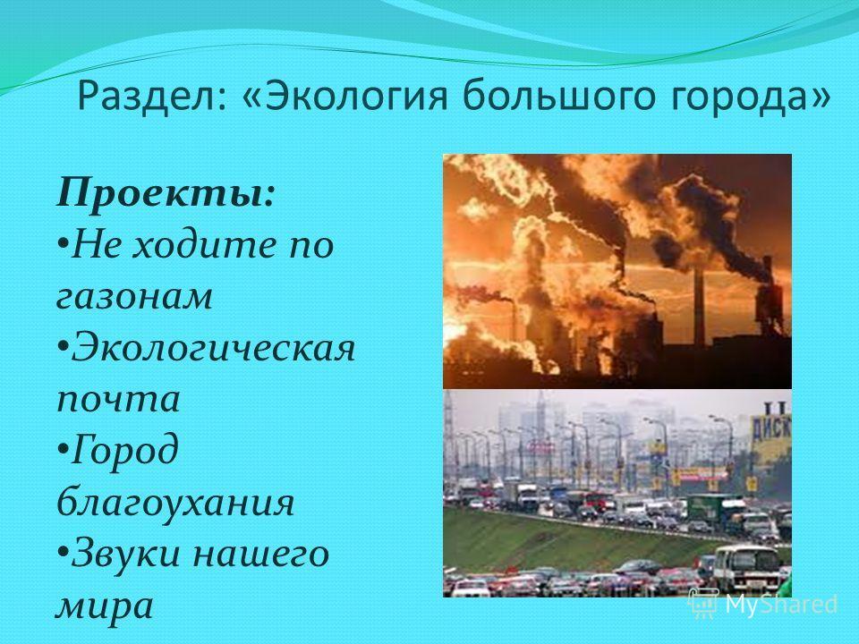 Раздел: «Экология большого города» Проекты: Не ходите по газонам Экологическая почта Город благоухания Звуки нашего мира