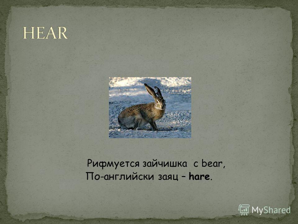 Рифмуется зайчишка с bear, По-английски заяц – hare.