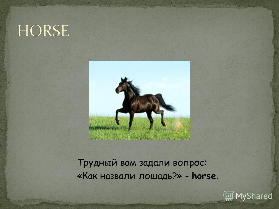 Трудный вам задали вопрос: «Как назвали лошадь?» - horse.