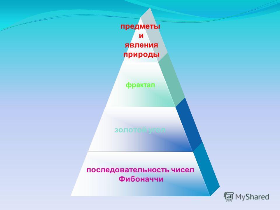 предметы и явления природы фрактал золотой угол последовательность чисел Фибоначчи