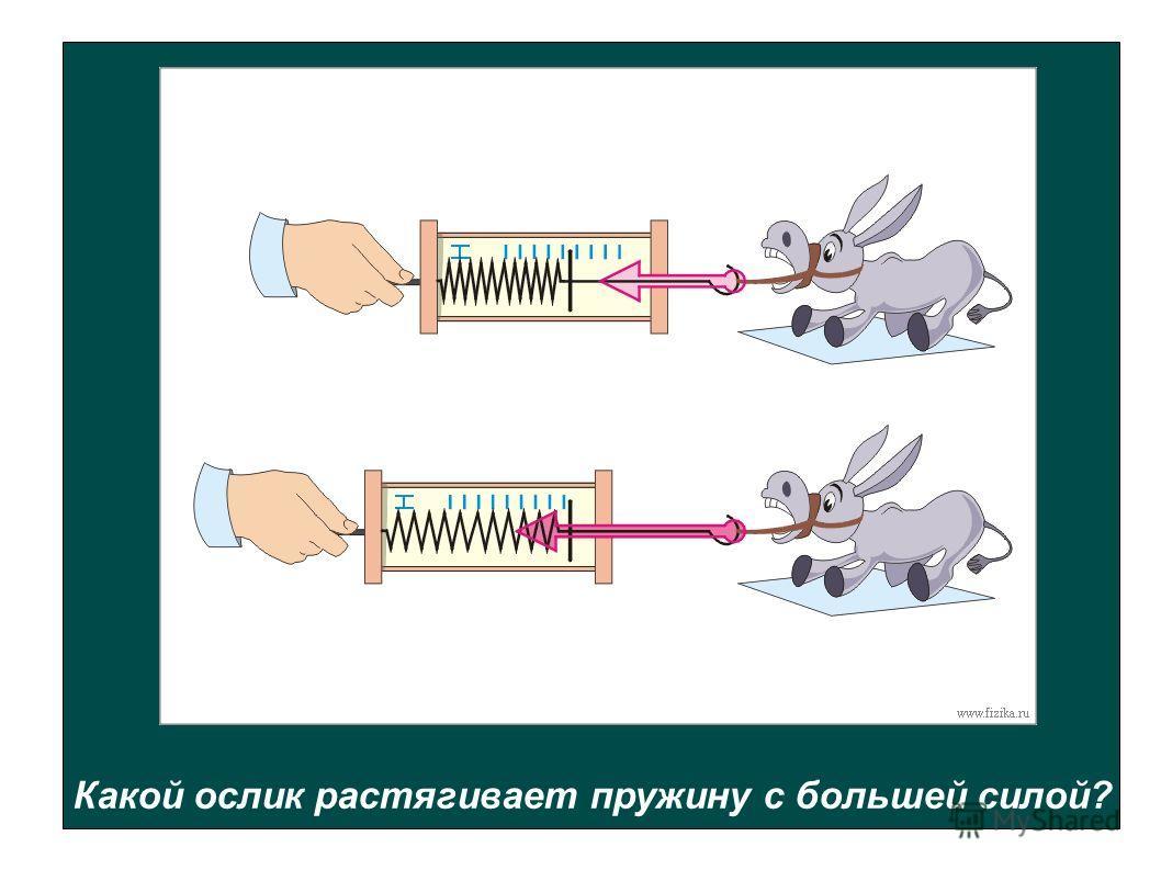 Какой ослик растягивает пружину с большей силой?