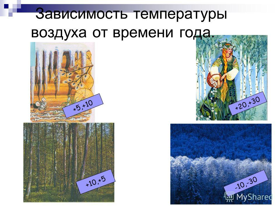 Пословицы и поговорки. «Чем дальше в лес,тем больше дров.» «Выше меры конь не скачет.» «Пересев хуже недосева.» « СКАЗКА ПРО БЕЛОГО БЫЧКА»