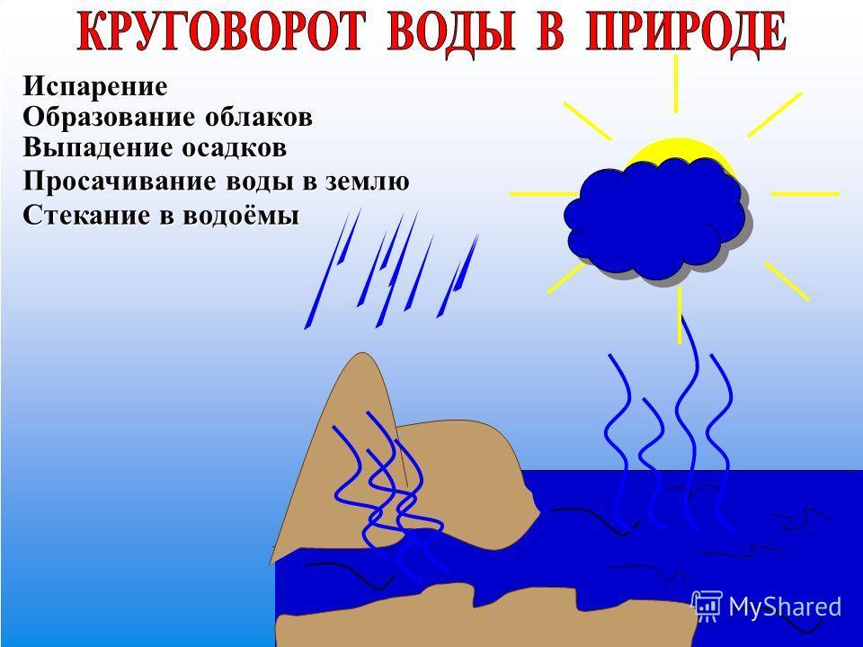 Испарение Образование облаков Выпадение осадков Просачивание воды в землю Стекание в водоёмы