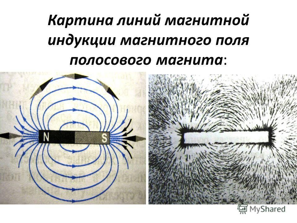Картина линий магнитной индукции магнитного поля полосового магнита: