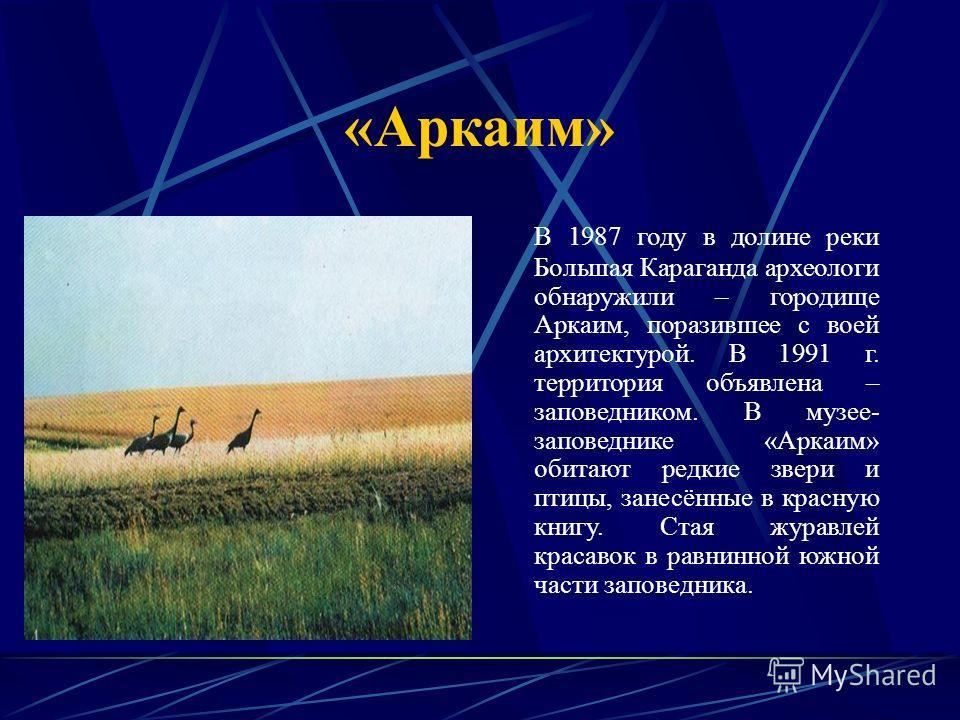 «Аркаим» В 1987 году в долине реки Большая Караганда археологи обнаружили – городище Аркаим, поразившее с воей архитектурой. В 1991 г. территория объявлена – заповедником. В музее- заповеднике «Аркаим» обитают редкие звери и птицы, занесённые в красн