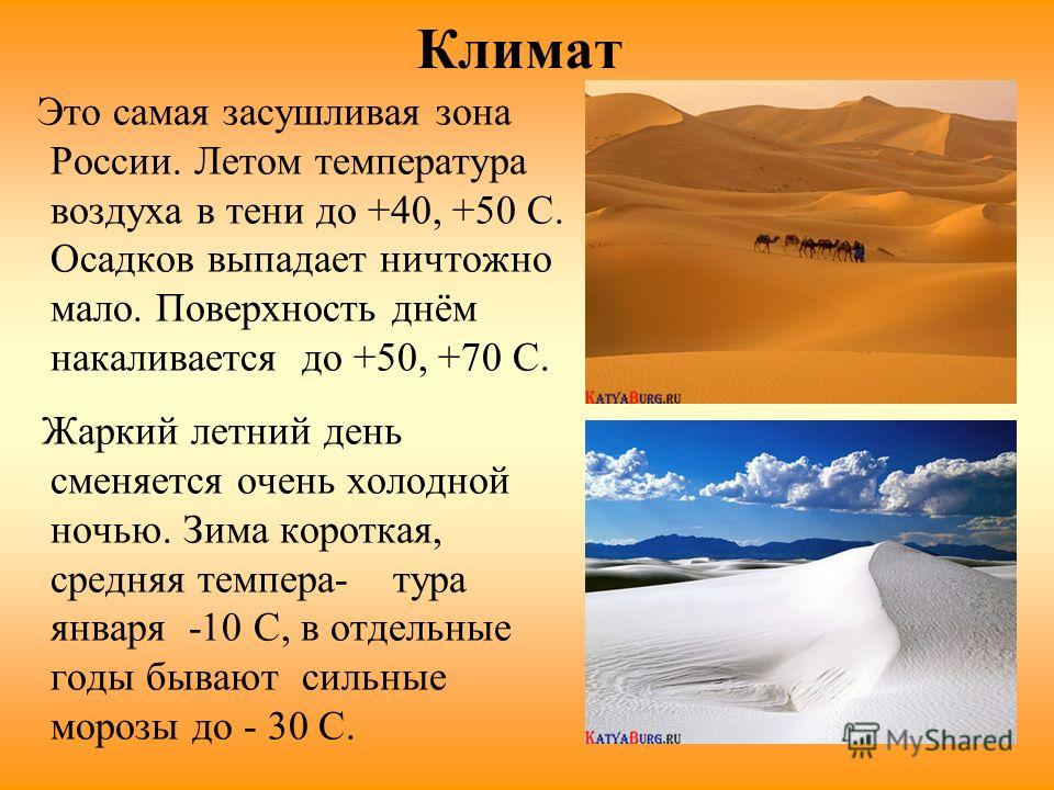 Климат Это самая засушливая зона России. Летом температура воздуха в тени до +40, +50 C. Осадков выпадает ничтожно мало. Поверхность днём накаливается до +50, +70 С. Жаркий летний день сменяется очень холодной ночью. Зима короткая, средняя темпера- т