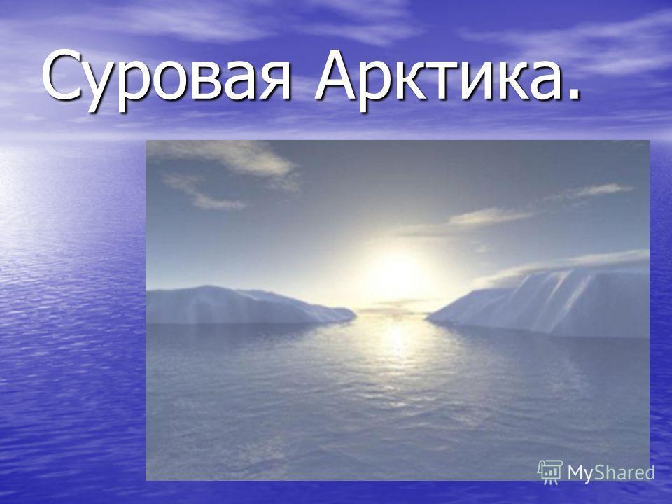 Суровая Арктика.