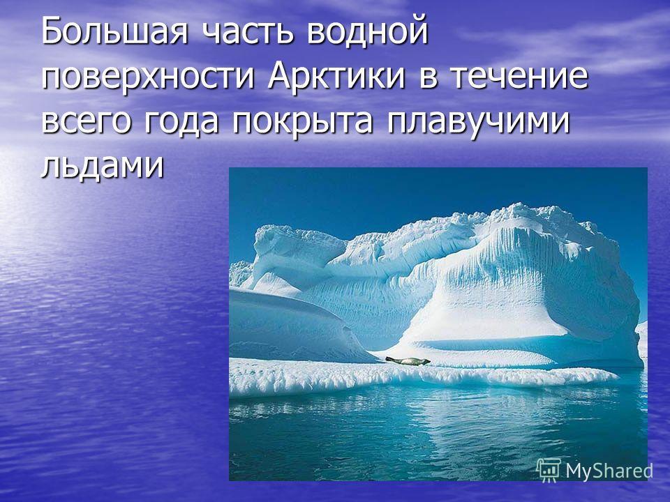 Большая часть водной поверхности Арктики в течение всего года покрыта плавучими льдами Большая часть водной поверхности Арктики в течение всего года покрыта плавучими льдами