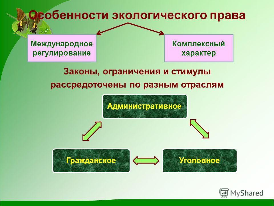 Особенности экологического права Законы, ограничения и стимулы рассредоточены по разным отраслям Международное регулирование Комплексный характер АдминистративноеУголовноеГражданское