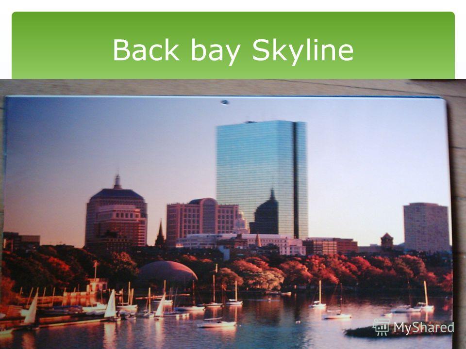 Back bay Skyline