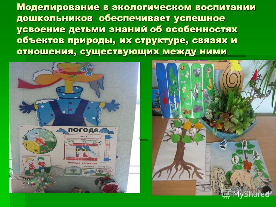 Моделирование в экологическом воспитании дошкольников обеспечивает успешное усвоение детьми знаний об особенностях объектов природы, их структуре, связях и отношения, существующих между ними