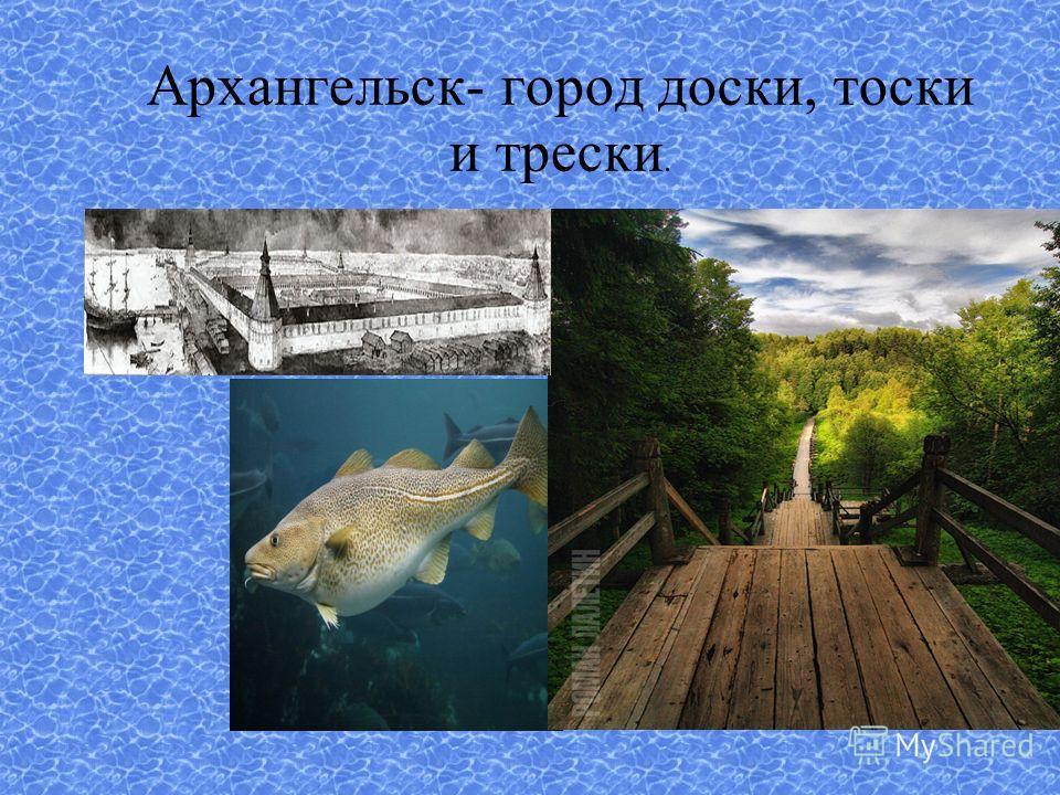 Архангельск- город доски, тоски и трески.