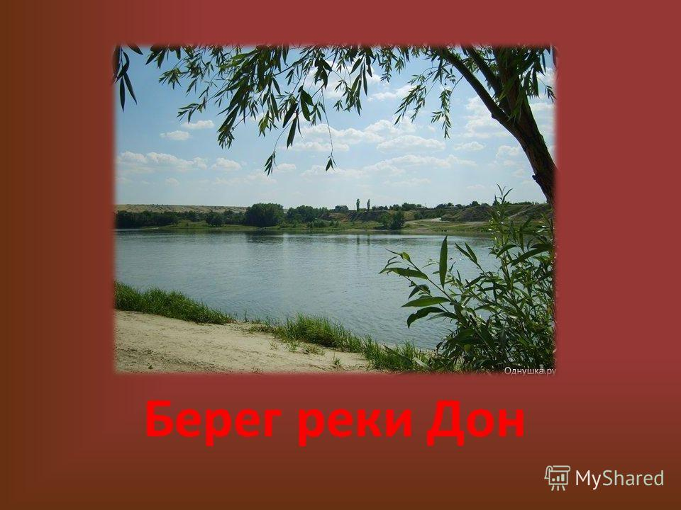 Берег реки Дон