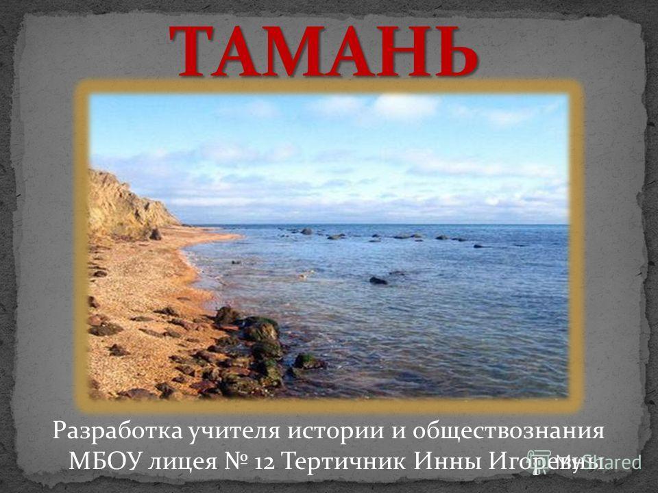 Разработка учителя истории и обществознания МБОУ лицея 12 Тертичник Инны Игоревны