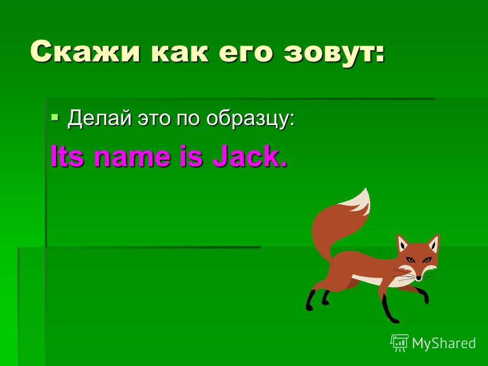 Скажи как его зовут: Делай это по образцу: Делай это по образцу: Its name is Jack.