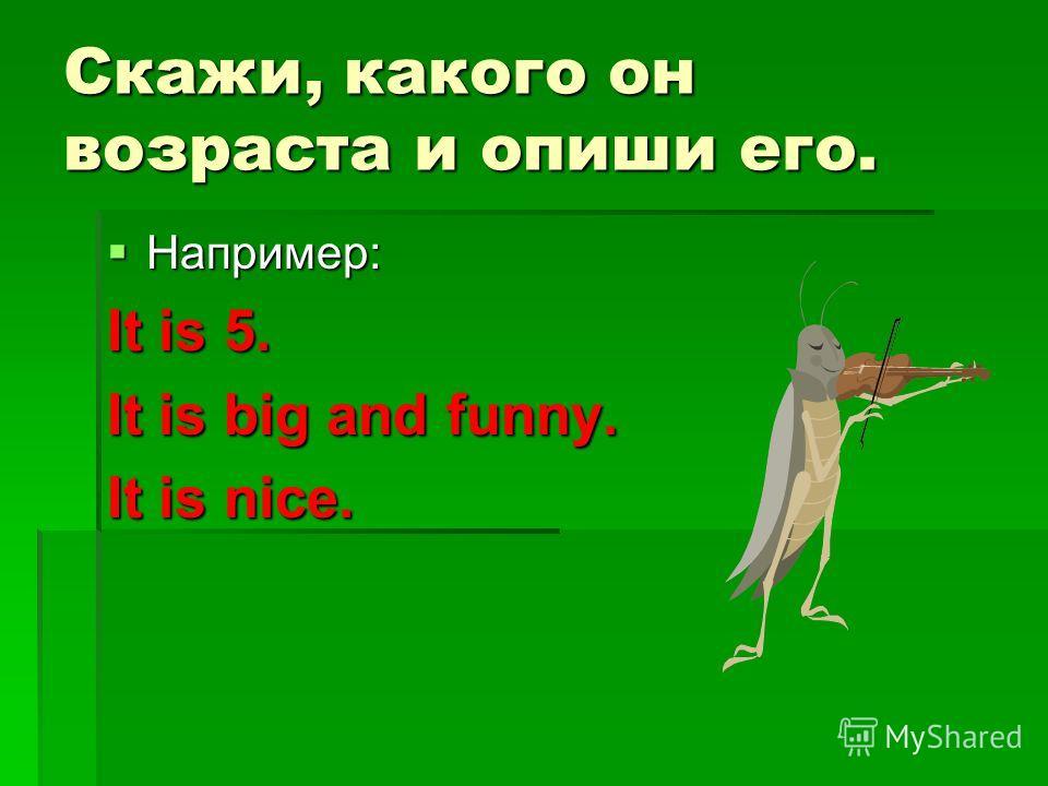 Скажи, какого он возраста и опиши его. Например: Например: It is 5. It is big and funny. It is nice.