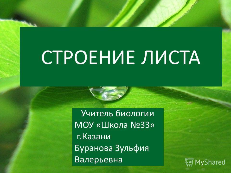 СТРОЕНИЕ ЛИСТА Учитель биологии МОУ «Школа 33» г.Казани Буранова Зульфия Валерьевна