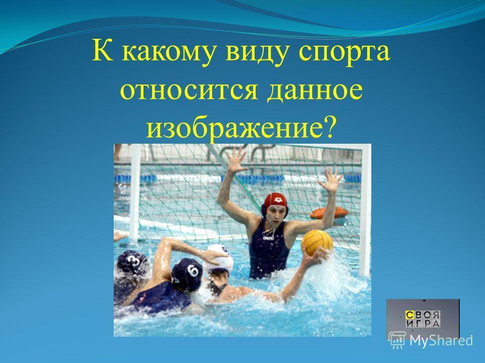 К какому виду спорта относится данное изображение?